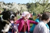 2014-04-13-kirschbluetenfest-114
