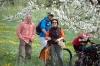 2014-04-13-kirschbluetenfest-31