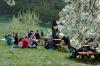 2014-04-13-kirschbluetenfest-43