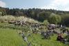 2014-04-13-kirschbluetenfest-60