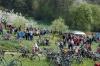 2014-04-13-kirschbluetenfest-61