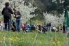 2014-04-13-kirschbluetenfest-65