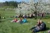 2014-04-13-kirschbluetenfest-71