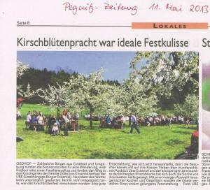 Nachtrag Kirschblütenfest 2013_ PZ