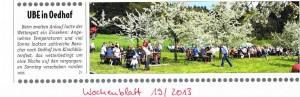 Nachtrag Kirschblütenfest 2013_ Wochenblatt
