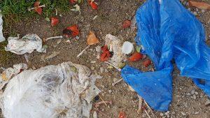 Illegale Müllablagerungen